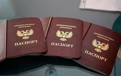 МВД РФ приравняло паспорта ДНР и ЛНР к украинским документам