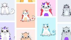 Как виртуальные кошки мощно разрекламировали криптовалюту Ethereum