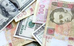 Украинские банкиры дали прогноз курса гривны на 2014 год