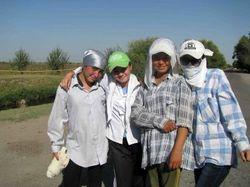 Отправку студентов на хлопок в Узбекистане контролирует милиция – СМИ