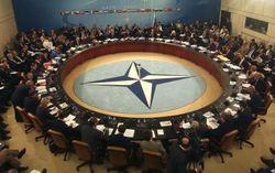 Мощнейшей DDoS-атаке подверглись сайты НАТО