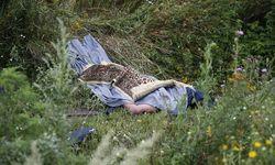 Порошенко пригласит русских расследовать катастрофу Боинга-777