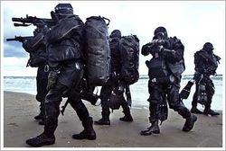 Пляжникам в Крыму придется делить лежаки с «вежливыми людьми»