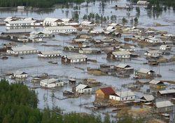 Ущерб от наводнения в Приамурье: только сои погибло на 20 млрд. рублей
