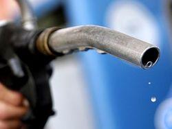 Набиуллина считает, что бензин дешеветь не будет