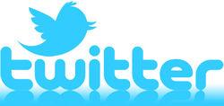 Акции Twitter потеряли практически 20 %