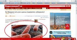 Баннерная реклама от Google c дискредитацией Евромайдана заполонила Интернет