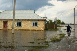 На юге Украины после наводнения могут вспыхнуть эпидемии сибирской язвы и тифа