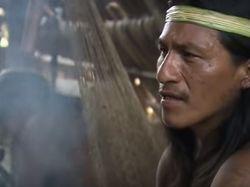 У индейцев Амазонки стабильное кровяное давление: названа причина