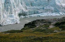 Инвесторам: к концу века Гренландия может оправдать свое название