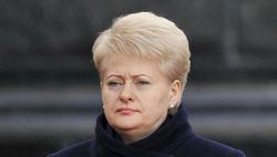 Литва начала председательство в Совбезе ООН