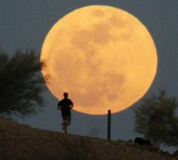 В ночь на 11 августа вновь увидим Суперлуние