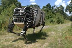 Google приобрела разработчика ходящих роботов