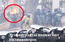 Демонстранты «присоединили» Грушевского к Евромайдану