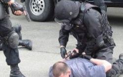 В Житомире готовилась серия терактов