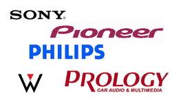 5 ведущих брендов автомагнитол в мае 2014 г. у россиян в Интернете