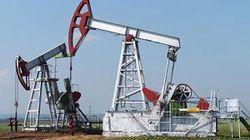 Названы нефтегазовые «шейхи» Украины
