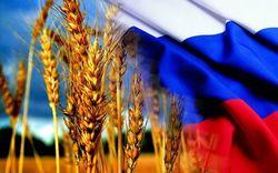 Россия примеряет на себя лавры мирового лидера на рынке экспорта зерна