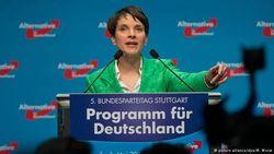 Новая немецкая партия АдГ – популисты, консерваторы или националисты?