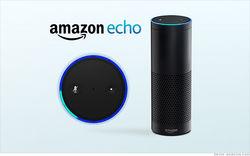 Amazon готовится к выпуску компактного варианта умной колонки Echo