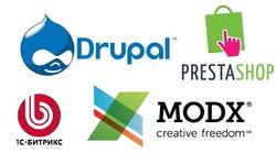 Определились самые популярные CMS для интернет-магазинов