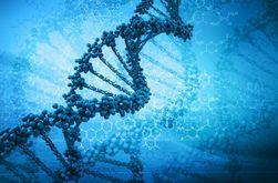 Ученые обнаружили послание Бога в гене человека