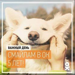 Сегодня день рождения сервиса «Смайлики» в Одноклассники