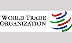 ВТО повторно рассмотрит спор между ЕК и РФ о пошлинах