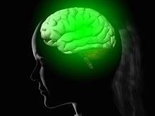 Ученые Австралии начали создание бионического мозга