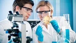 Расшифровка генома холерной бактерии XIX века дала неожиданные результаты