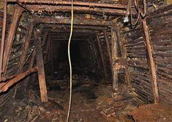 Чем можно заменить нерентабельные шахты