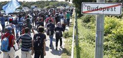 Венгрия создаст «защитную линию» от беженцев