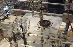 3D-принтеры научили создавать готовые блюда для еды