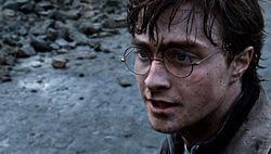 Гарри Поттер предстанет перед читателями с новой профессией