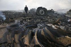 Нидерланды не будут требовать трибунала по сбитому Boeing МН17 на уровне ООН