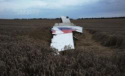 6 неотложных мер для Украины и мира из-за сбитого террористами Боинга-777