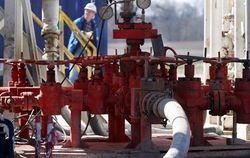 Словакия и Украина подписали меморандум о реверсных поставках газа