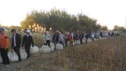 Тема сбора хлопка в Узбекистане вновь актуальна