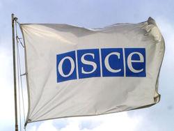 ОБСЕ готова стать посредником между властью и оппозицией Украины