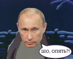 Сергей Ролдугин может быть замешан в «деле Магнитского» – OCCRP