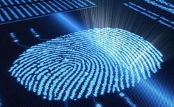 Microsoft рассказала о гаджетах, которые получат сканер отпечатков пальцев