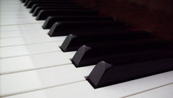 Пианист из Германии играл для сепаратистов Донбасса. Но это не вся правда