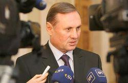 Ефремов назвал невозможным освобождение Тимошенко к саммиту