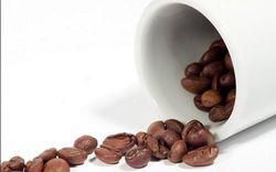Трейдеры биржи ожидают роста цен на кофе
