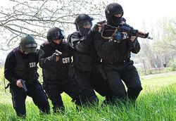 МВД: военные пленили террористов в Краматорске