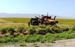 СМИ: Зерновая независимость Узбекистана - миф