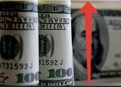 Курс доллара вырос до 10,50 гривны на Форекс на фоне экономического кризиса Украины