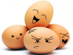Экономисты объяснили, почему подорожали яйца в РФ
