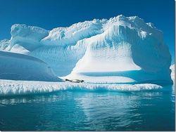 Льды Арктики могут растаять к 2030г.