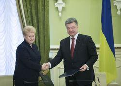Литва остается «адвокатом» Украины в Европе